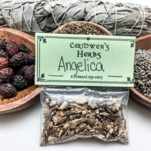 Angelica Herb Packet