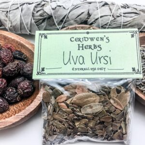 Uva Ursi Herb Packet