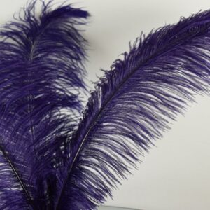 Purple Ostrich Feather Quill Pen