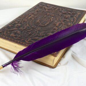 Purple Turkey Quill Pen